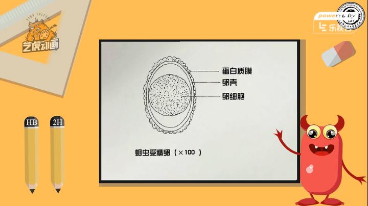 交通大学实验室医学教学课件动画